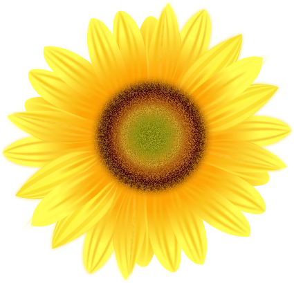 sunflower bokay